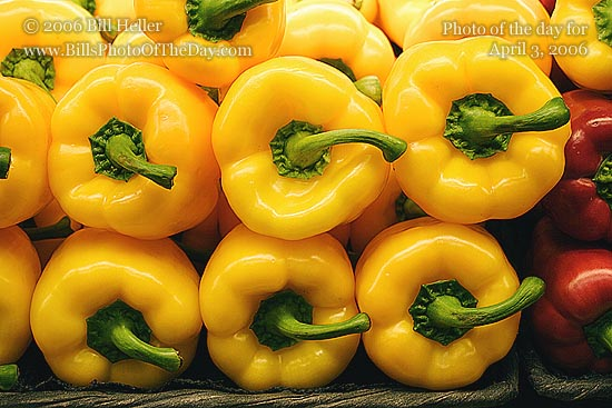 Yellow Bell Peppers stacked for sale