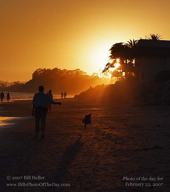 Dog running on Butterfly Beach