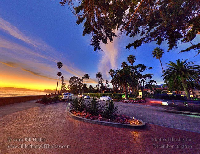 360° view of the sunset under a tree by the Coral Casino