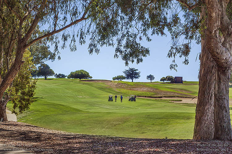 Foursome on the Fairway at Sandpiper Golf Course