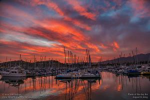 Saturday, August 8, 2015 - Harbor Glow