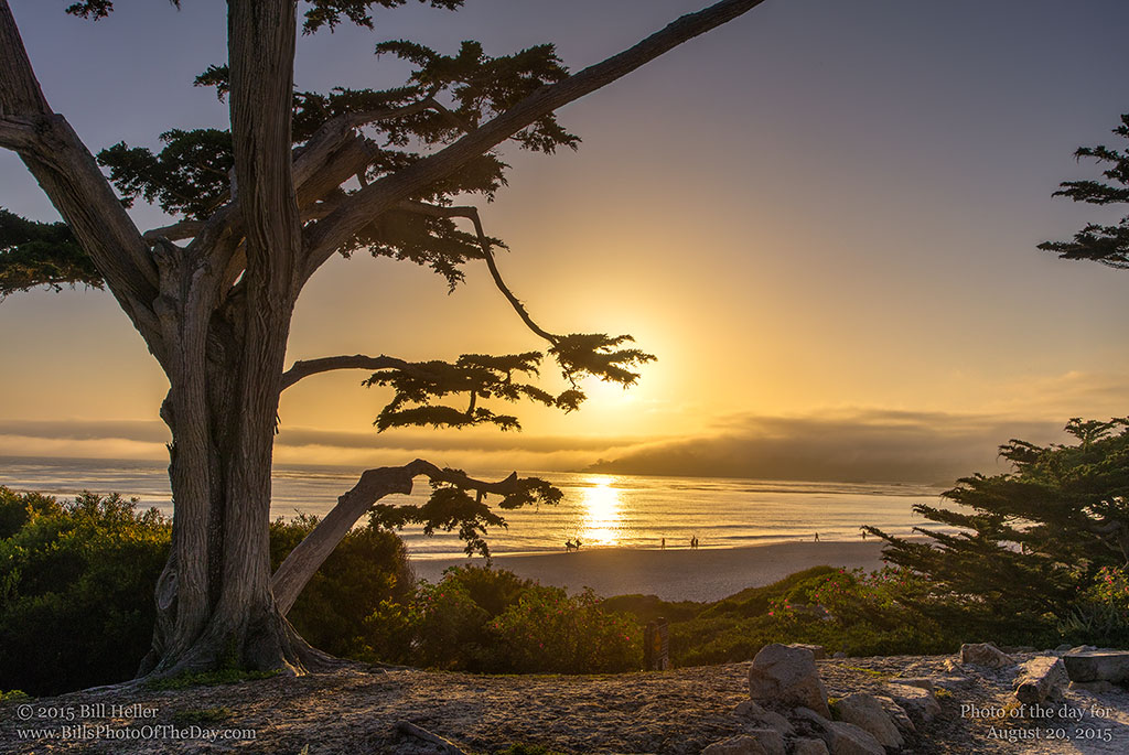Carmel Sunset Mist