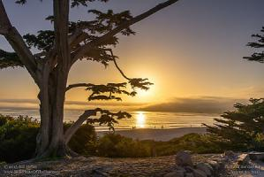 Thursday, August 20, 2015 - Carmel Sunset Mist